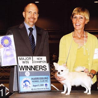Kateat at Harrisburg Kennel Club