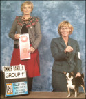 Rocky wins Group 1st at Valley Forge Kennel Club