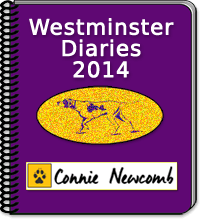Westminster Diaries 2014 by Connie Newcomb : 2/11/14 - Best in Show