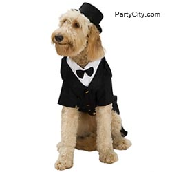 Classic Dapper Dog Costume