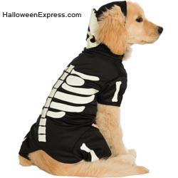 Glow in the Dark Dog Costume