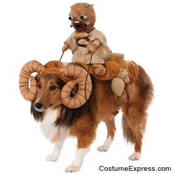 Star Wars Bantha Rider Dog Costume