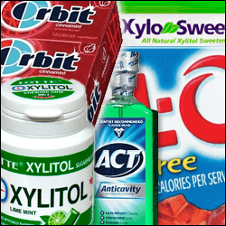Xylitol poisoning can be fatal for your dog