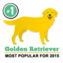 Most popular dog breed for 2015
