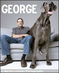 Giant George, former World's Tallest Dog
