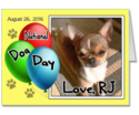 Celebrate National Dog Day – August 26th