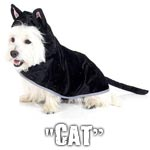 Cat costume for dogs