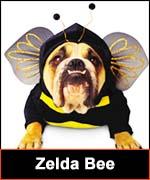 Zelda Bee costume