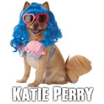 Katie Perry dog costumes
