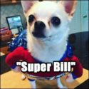 Super Bill Halloween costume
