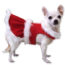 Common Hazards for Your Dog at Christmas