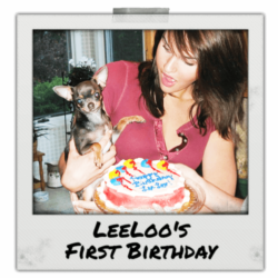 LeeLoo's First Birthday