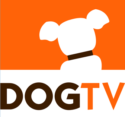 DogTV,  Is Your Pet a Fan?