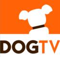 DogTV,  Is Your Pet a Fan?