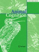 Animal Cognition - 'Who's a good boy?!' Dogs prefer naturalistic dog-directed speech