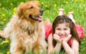Kids and Dogs: A Parent's Guide to Canine Body Language & Safety