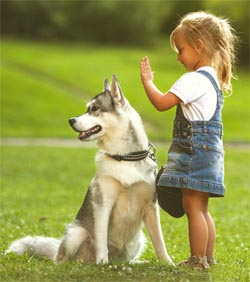 young girl with large dog