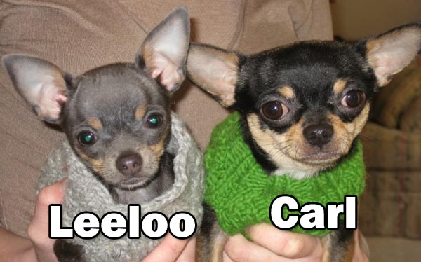 Best Friends - Leelo and Carl