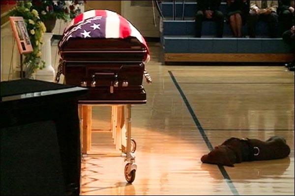 Navy SEAL Jon Tumilson's Labrador retriever Hawkeye
