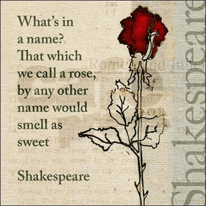 A rose by any other name would smell as sweet - Shakespeare