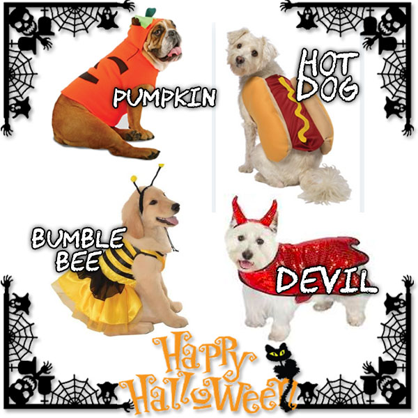 Top Halloween Pet Costumes 2018