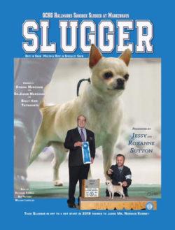 Team Slugger