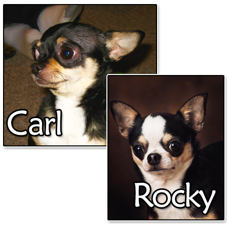 Carl and Rocky