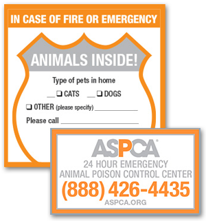 Order your free Pet Safety Pack