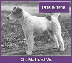 Ch. Matford Vic