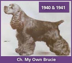 Ch. My Own Brucie